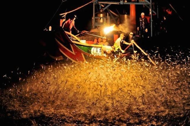 Màn đánh cá bằng lửa đẹp mê hoặc ở Đài Loan - ảnh 6