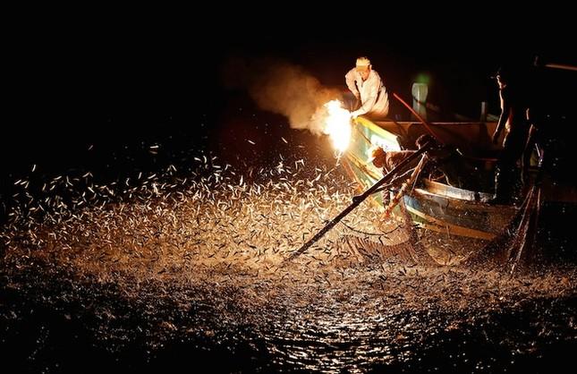 Màn đánh cá bằng lửa đẹp mê hoặc ở Đài Loan - ảnh 2