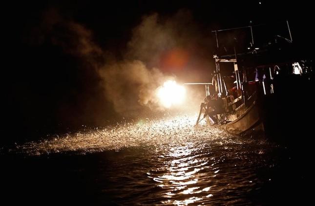 Màn đánh cá bằng lửa đẹp mê hoặc ở Đài Loan - ảnh 4
