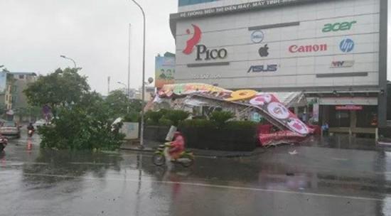 Bão số 1 càn quét ở Hà Nội, cây cối đổ la liệt - ảnh 3