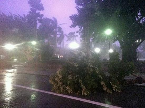 Mái tôn bay, cửa kính bị giật tung trong bão lớn - ảnh 7
