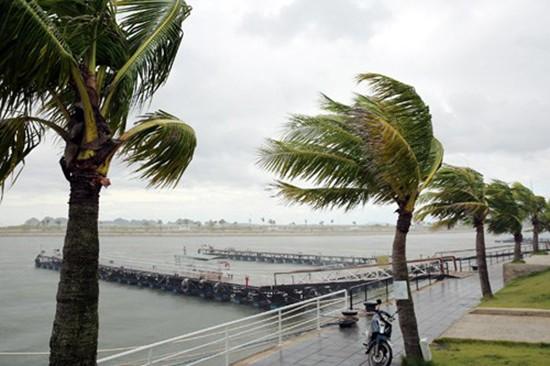 Mái tôn bay, cửa kính bị giật tung trong bão lớn - ảnh 2