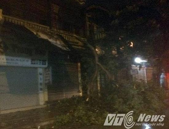 Mái tôn bay, cửa kính bị giật tung trong bão lớn - ảnh 6