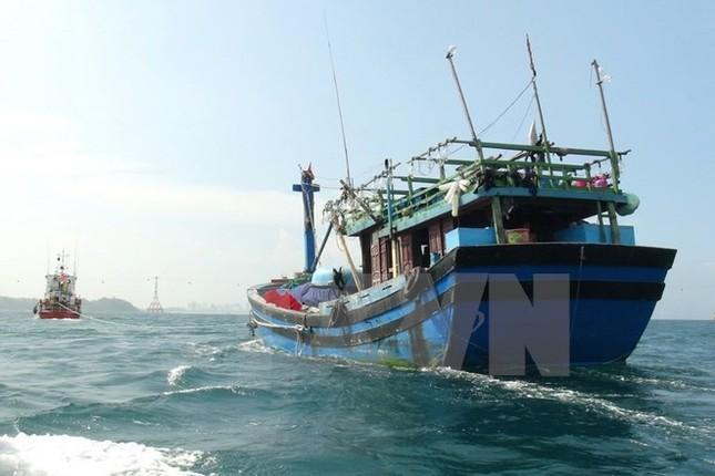 Bảo hộ công dân Việt Nam gặp nạn ở ngoài cửa Vịnh Bắc Bộ - ảnh 1