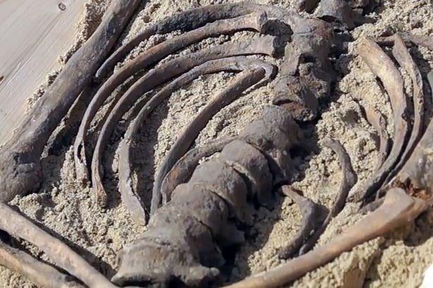 Khám phá bộ xương của 'ma cà rồng' cách đây 500 năm - ảnh 3