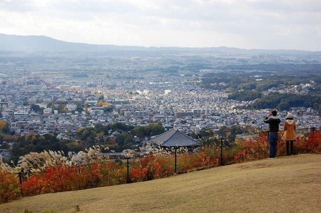 Lễ hội đốt nguyên một ngọn núi ở Nhật Bản - ảnh 1