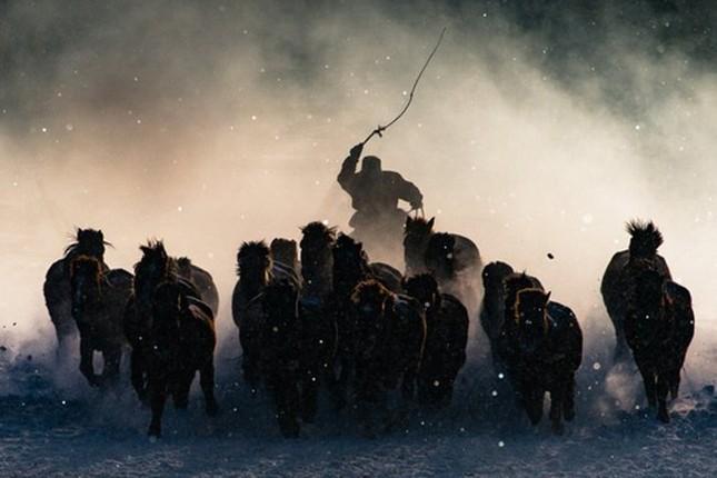 12 bức ảnh đẹp nhất được trao giải National Geographic 2016 - ảnh 1