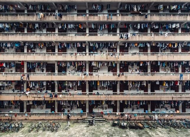 12 bức ảnh đẹp nhất được trao giải National Geographic 2016 - ảnh 6