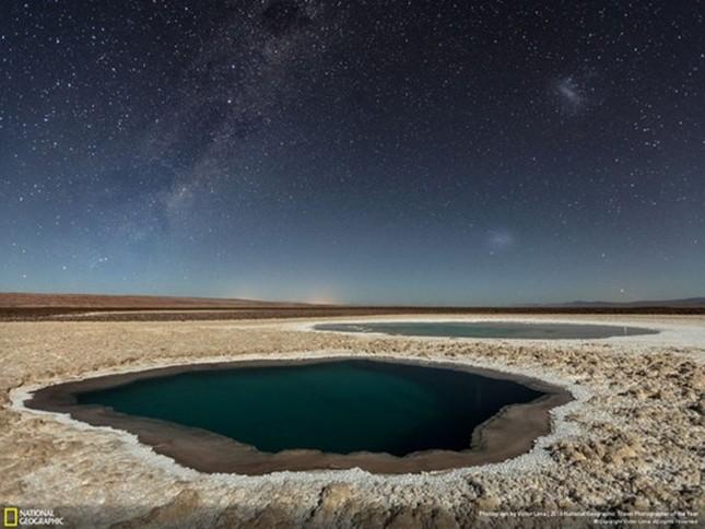 12 bức ảnh đẹp nhất được trao giải National Geographic 2016 - ảnh 7