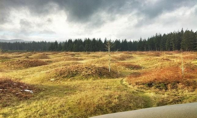 Những gò đất bí ẩn mọc san sát ở thảo nguyên nước Mỹ - ảnh 3