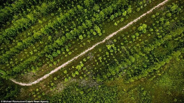 Thiên nhiên Đan Mạch nhìn theo chiều thẳng đứng - ảnh 5