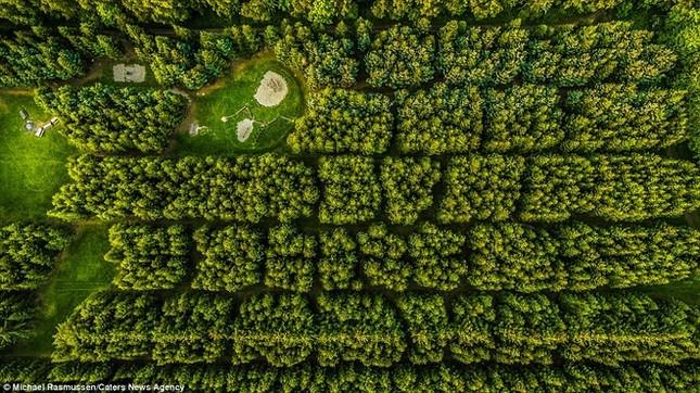 Thiên nhiên Đan Mạch nhìn theo chiều thẳng đứng - ảnh 3
