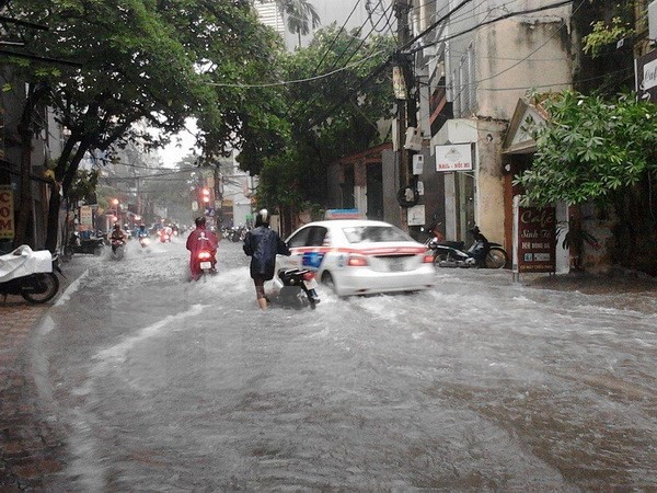 Hà Nội: 3 người bị thương, 100 cây xanh bị đổ trong cơn bão số 3 - ảnh 1