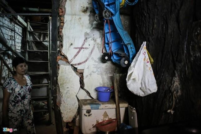 [ẢNH] Nhiều cây trăm tuổi ở Sài Gòn bị... nhốt vào nhà - ảnh 7