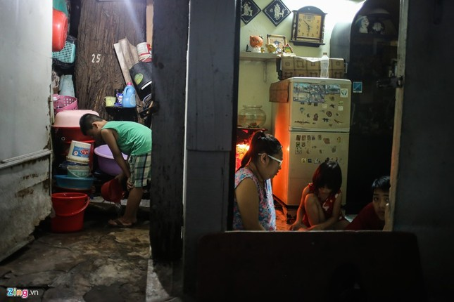 [ẢNH] Nhiều cây trăm tuổi ở Sài Gòn bị... nhốt vào nhà - ảnh 9