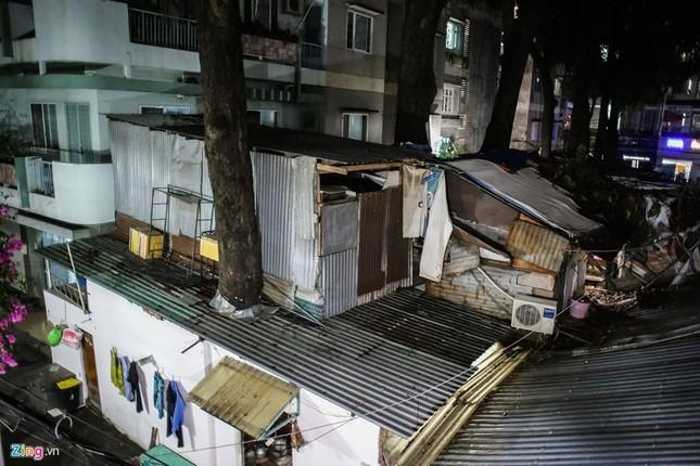 [ẢNH] Nhiều cây trăm tuổi ở Sài Gòn bị... nhốt vào nhà - ảnh 15