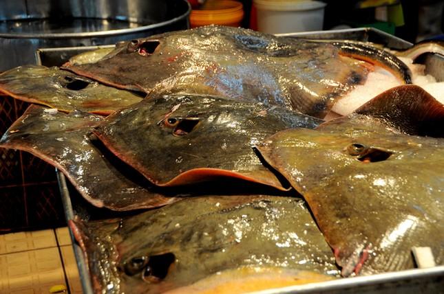 Chợ cá tươi rói ở Sài Gòn chỉ bán vào ban đêm - ảnh 3