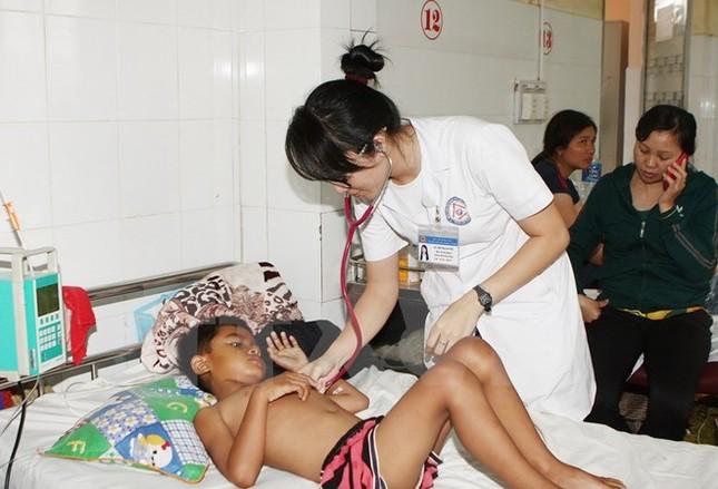 Bộ Y tế kiểm tra, giám sát phòng chống sốt xuất huyết tại Gia Lai - ảnh 1