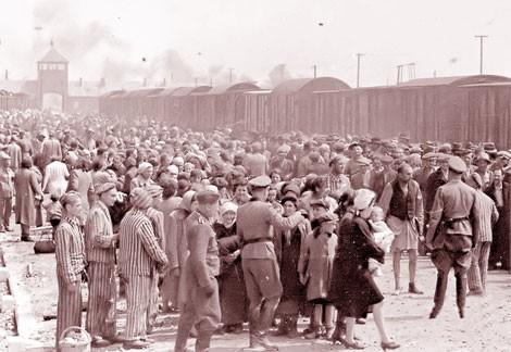 Trại tập trung phát xít Auschwitz và nỗi đau nhân loại - anh 2