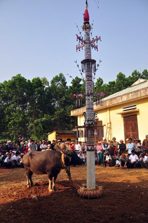 Nghi lễ dựng cây nêu và bộ gu của người Co ở Quảng Nam là Di sản văn hóa quốc gia - anh 1