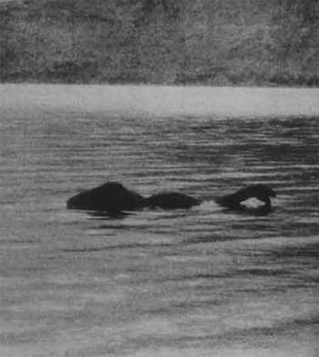 Thực hư bí ẩn về quái vật hồ Loch Ness - ảnh 2