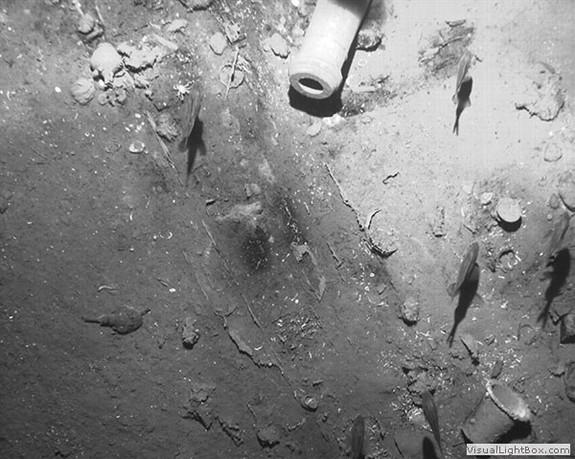 Tìm thấy xác tàu đắm chở theo hàng tỷ đô châu báu tại Colombia - ảnh 4