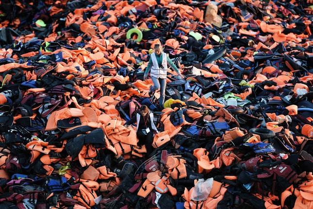 Nhìn lại thế giới năm 2015 qua những bức ảnh ấn tượng nhất - ảnh 14