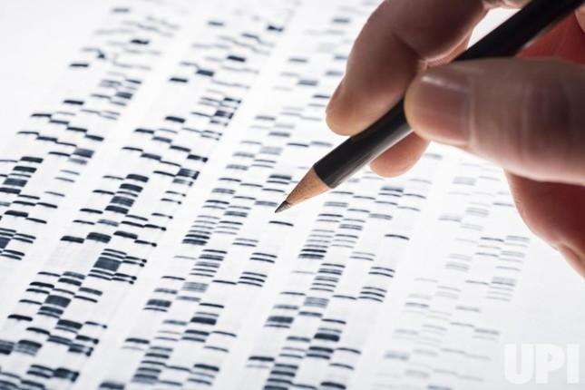 10 khám phá khoa học lớn nhất năm 2015 - ảnh 7