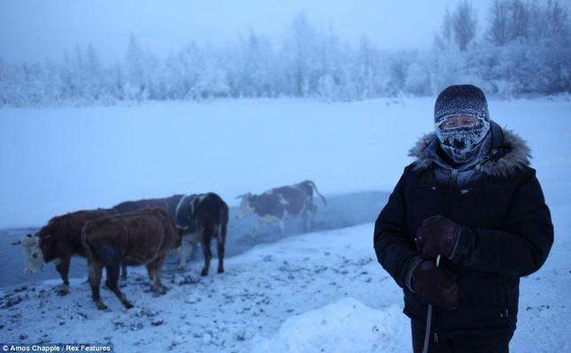 Khám phá cuộc sống tại ngôi làng lạnh nhất thế giới ở Nga - ảnh 7