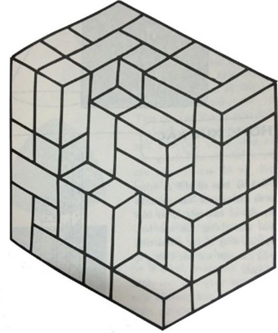 Thú vị bài toán bậc tiểu học Ảo ảnh thị giác - ảnh 1