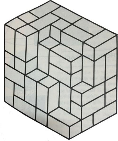 Lời giải bài toán bậc tiểu học 'Ảo ảnh thị giác' - ảnh 1