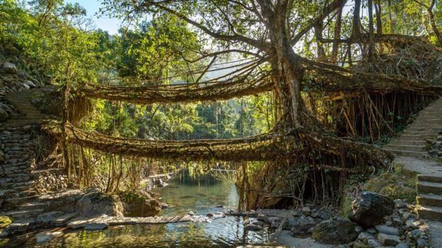 Khám phá cuộc sống ở ngôi làng mưa nhiều nhất hành tinh - ảnh 6