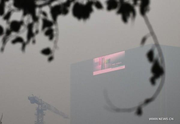 Đi thăm họ hàng, bị lạc đường cả ngày vì sương mù - ảnh 1