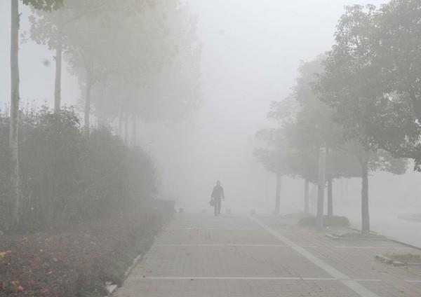 Đi thăm họ hàng, bị lạc đường cả ngày vì sương mù - ảnh 2