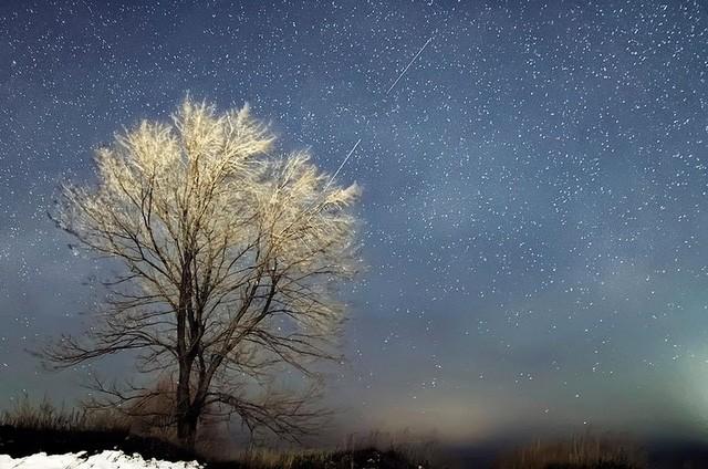 Chùm ảnh mưa sao băng Geminid 2015 huyền ảo trên khắp thế giới - ảnh 9