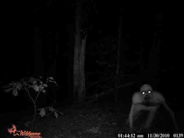 7 loài sinh vật bí ẩn và đáng sợ nhất hành tinh - ảnh 1
