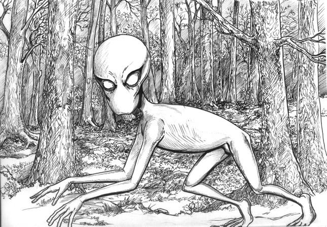 7 loài sinh vật bí ẩn và đáng sợ nhất hành tinh - ảnh 2