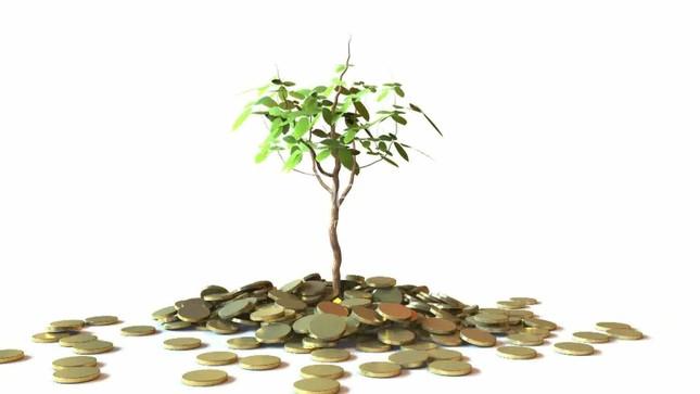 5 bài học về tiền bị 'bỏ lỡ' trong trường học - ảnh 1