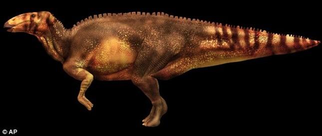 Máu của khủng long vẫn tồn tại trong hóa thạch suốt 80 triệu năm - ảnh 2