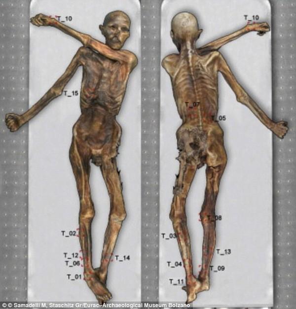 Phát hiện hình xăm cổ đại nhất thế giới trên xác ướp 5.300 tuổi - ảnh 4