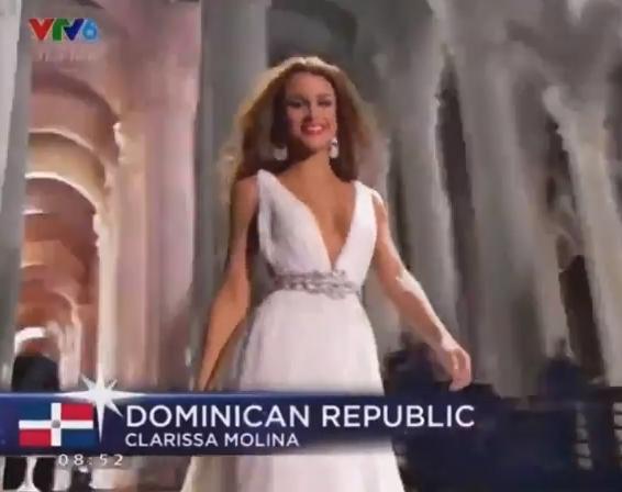 Scandal phút chót Hoa hậu Hoàn vũ 2015: Trao nhầm giải cho Colombia - ảnh 12