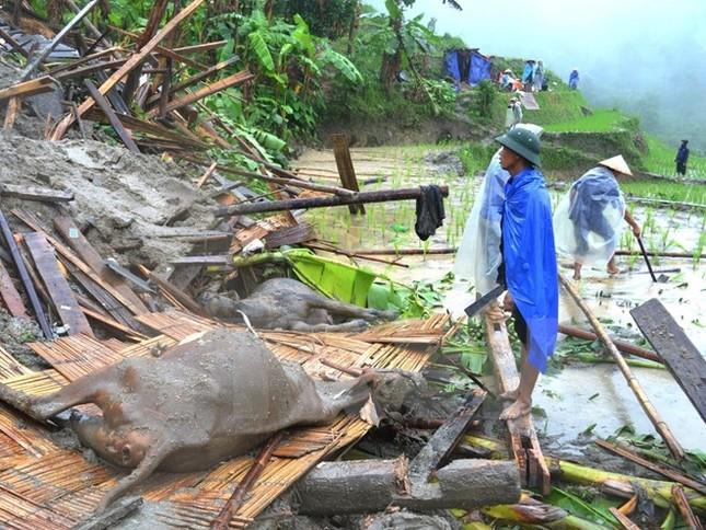 Việt Nam đứng thứ 7 trên toàn cầu về thiệt hại do biến đổi khí hậu - ảnh 1