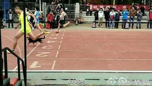 Kỳ lạ chó đi học đại học ở Trung Quốc - ảnh 6