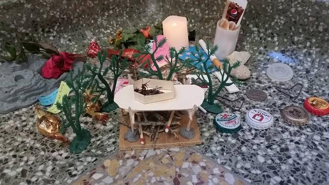 Nhóm sinh viên Mỹ tổ chức đám tang cho một con… gián - ảnh 4