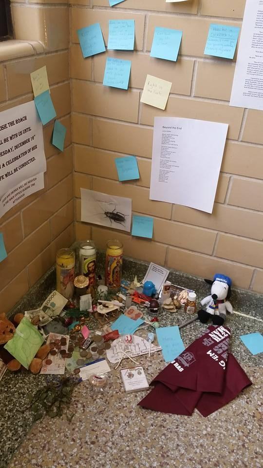 Nhóm sinh viên Mỹ tổ chức đám tang cho một con… gián - ảnh 3
