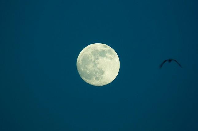 Sự thật đáng kinh ngạc về mặt trăng mà bạn chưa từng biết - ảnh 3