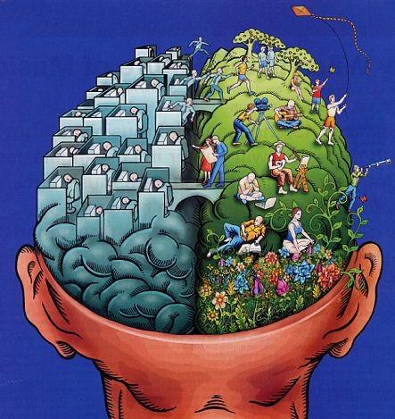 Có gì khác biệt trong não phải và não trái của con người? - ảnh 1