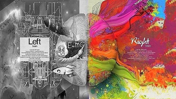 Có gì khác biệt trong não phải và não trái của con người? - ảnh 2
