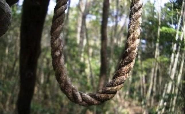 Lạnh gáy khu rừng hàng ngàn người 'đua' nhau vào tự sát - ảnh 1