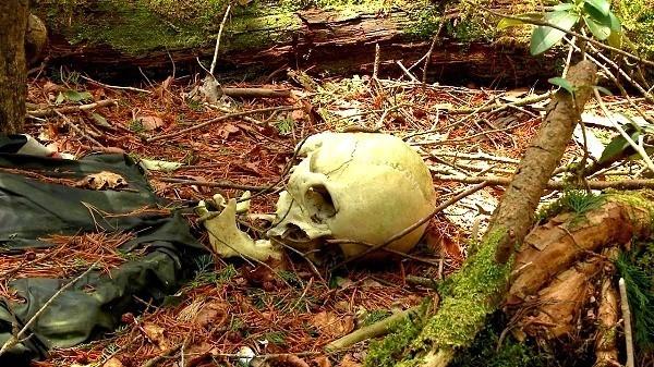 Lạnh gáy khu rừng hàng ngàn người 'đua' nhau vào tự sát - ảnh 5